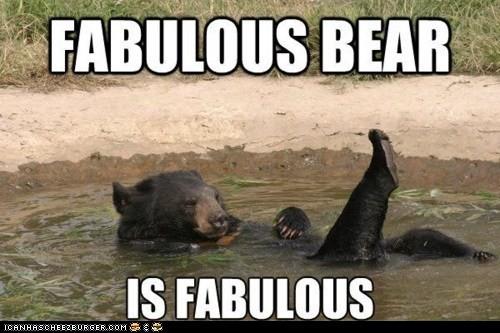 fabulous-bear